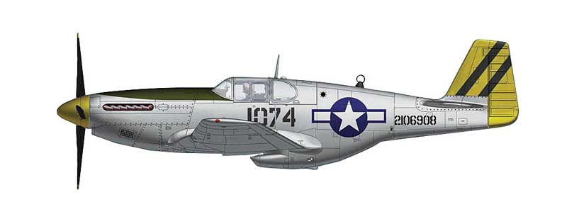 "P-51B Mustang ""2106908,"" Lt. Leonard R. Reeves, 530th FS, 311th FG, Pungchacheng, January 1945 (1:48)"