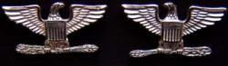 War Eagle Colonel Rank Sterling War Eagle, War Eagles, Colonel, Colonel rank, sterling war eagle, silver war eagles