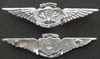 Vietnam US Army SF wing Badge Sterling Air Borne Vietnam Special Forces, Airborne Badge, SF Badge, Special Forces