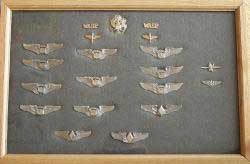Complete set of WASP wings Sterling