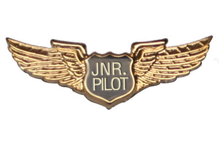 Junior Pilots Wings Lapel Pin / Tie Tack, ACI Aviation Jewelry and Bag Tags Item Number PIN401