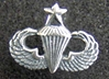 Senior Paratrooper Badge Charm Sterling, Weingarten Gallery Item Number P-104