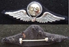 WWI Balloon Pilot French Design Sterling WWI Balloon, Balloon, Balloon Pilot, WWI Balloon Pilot