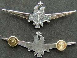 American Airlines Captain Pilot wing sterling silver by Weingarten Gallery Item Number: P-2049