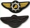 1930's Goodyear Bullion Airship Pilot Wing, Weingarten Gallery Item Number P-2190